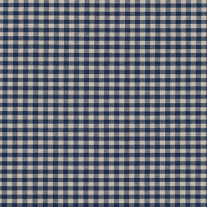 Robert Kaufman Crawford Gingham Medium SB-14300D2-9 NAVY